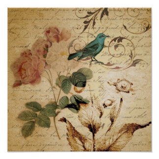 Boho Botanical Rose Paris Scripts french bird Poster