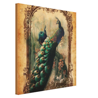 boho floral french country modern vintage peacock canvas print