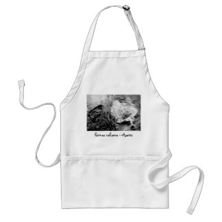 Boiling thermal water adult apron