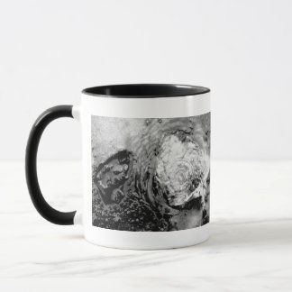 Boiling thermal water mug