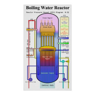 Boiling Water Reactor Pressure Vessel Diagram Poster