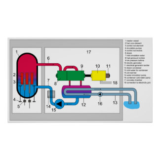 Boiling Water Reactor System Diagram Poster