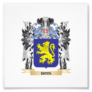 Bois Coat of Arms - Family Crest Photo Print