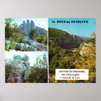 Bois de Pais Olive, Ardeche Poster