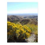 Boise Foothills Post Card