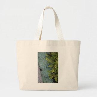 Boj y Succulents - fotografía de la bella arte Bolsas