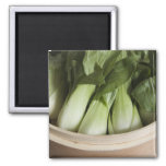 Bok choy 2 inch square magnet