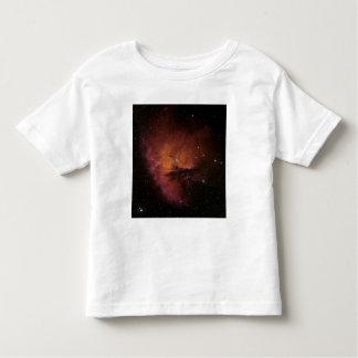 Bok Globules in NGC 281 T-shirt