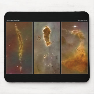 Bok Globules in the Carina Nebula from the Hubble Mouse Pad