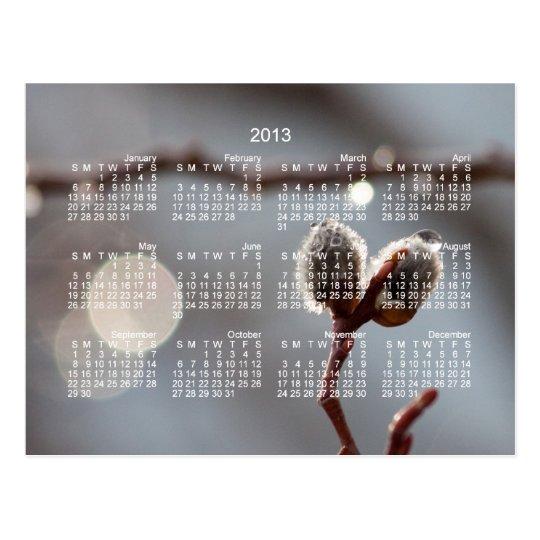 Bokeh Beautiful; 2013 Calendar Postcard