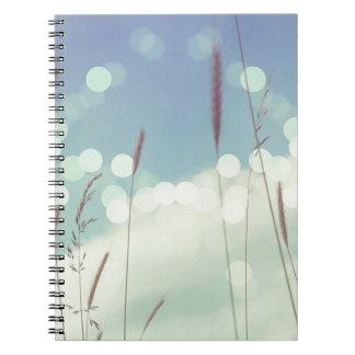 Bokeh Christmas Light Notebook