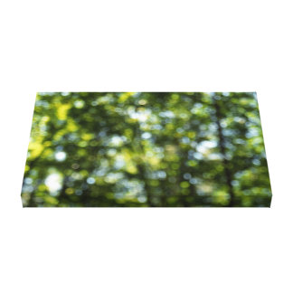 Bokeh in Spring Canvas Print