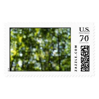 Bokeh in Spring  – Large stamp