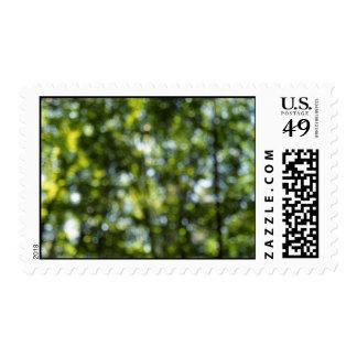Bokeh in Spring  – Medium stamp
