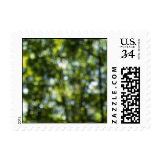 Bokeh in Spring – Small stamp