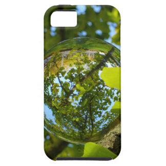 Bola de cristal en árbol del Gingko Funda Para iPhone SE/5/5s