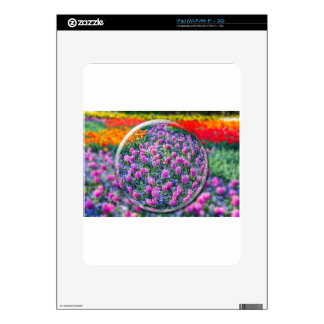 Bola de Crystall con los jacintos y las flores iPad Calcomanía