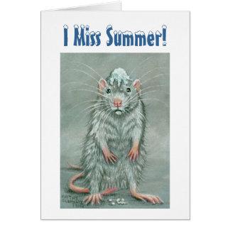 ¡Bola de nieve de la rata en la cabeza Srta Summ