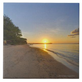 Bola de oro de Sun que fija sobre la isla tropical Azulejo Cuadrado Grande
