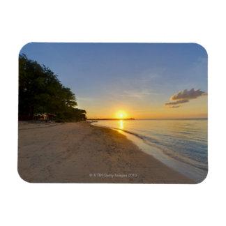 Bola de oro de Sun que fija sobre la isla tropical Imán De Vinilo