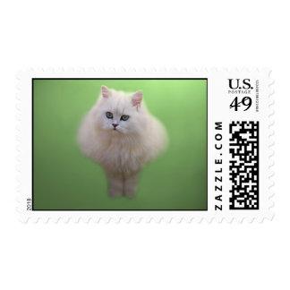 Bola del gatito de la pelusa sello