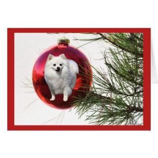 Bola del rojo de la tarjeta de Navidad de Pomerani