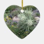 Bola escarchada: Wildflowers alpinos Ornamentos Para Reyes Magos