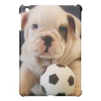 Bola inglesa del perrito w Soccer del dogo