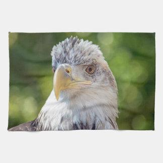 Bola joven Eagle Toalla