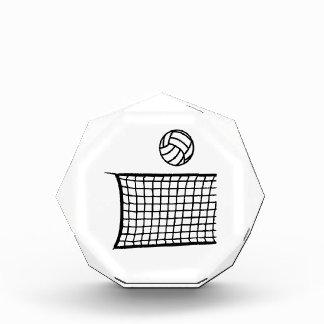 Bola neta del voleibol