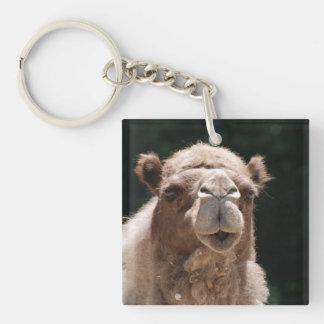 Bold Camel Square Acrylic Key Chain