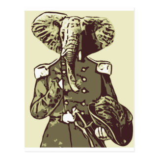 Bold elephant Fellow Postcard