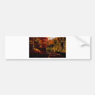 Bold Fall Colours on St Joseph Island Bumper Sticker