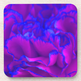 Bold Fuschia Pink and Blue Carnation Flower Coasters