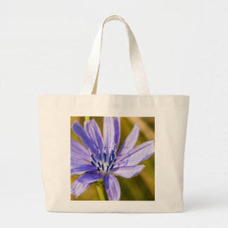 Bold in the Sun Canvas Bags