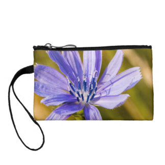 Bold in the Sun Coin Wallet