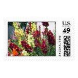 Bold Rocket Snapdragons Postage Stamps