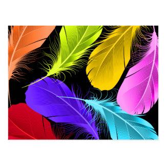 Bold Vivid Wild Colored Feathers On Black Postcard