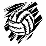 bold volleyball graphic photo sculpture