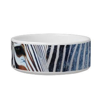 Bold Zebra Pet Bowl