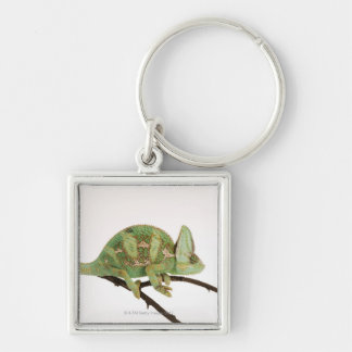 Boldly coloured chameleon with characteristic 2 Silver-Colored square keychain