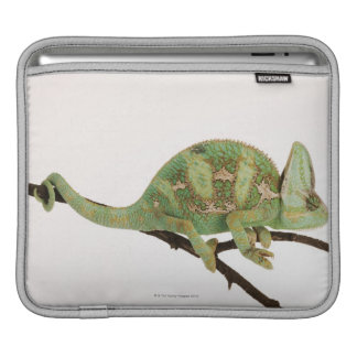 Boldly coloured chameleon with characteristic 2 sleeves for iPads
