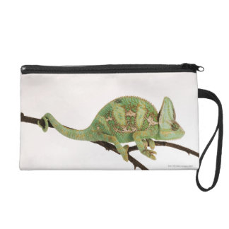 Boldly coloured chameleon with characteristic 2 wristlet purse