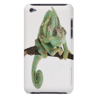 Boldly coloured chameleon with characteristic barely there iPod cover