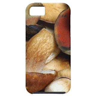 boleto iPhone 5 Case-Mate cobertura