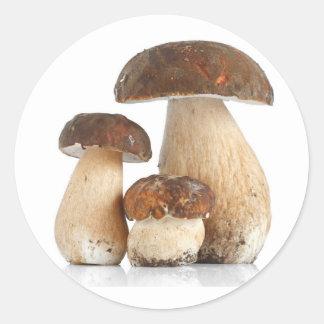 Boletus Edulis Classic Round Sticker