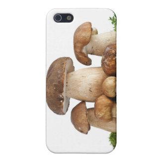 Boletus Edulis mushrooms Case For iPhone SE/5/5s