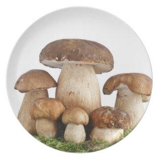 Boletus Edulis mushrooms Melamine Plate