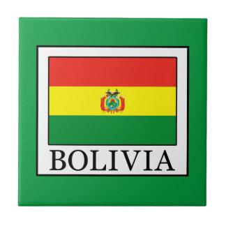 Bolivia Ceramic Tile