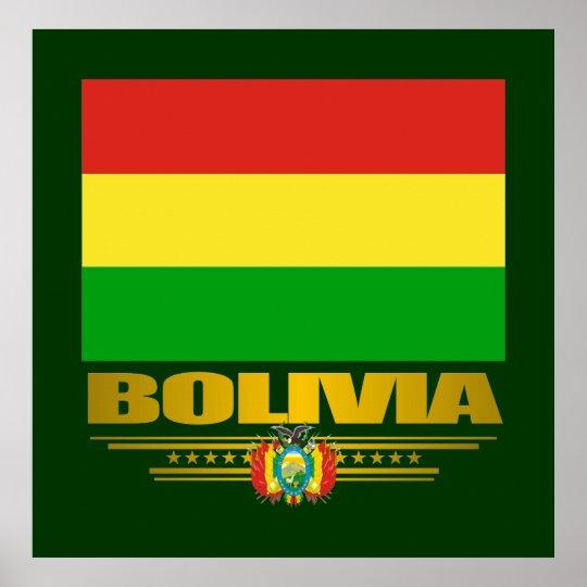 """Bolivian Pride"" Posters & Prints"